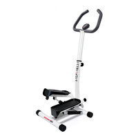 Stepper EVERFIT MINISTEPPER TWIST